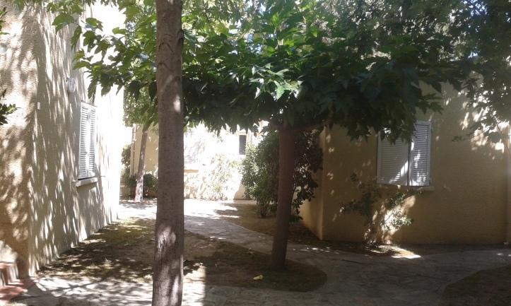 2015-08-02 Corsica (1)