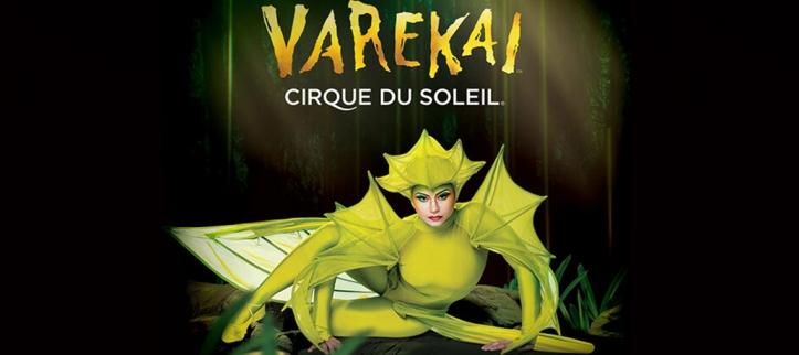 cirque du soleil varekai.jpg