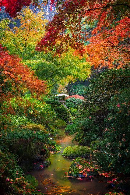 giardino-autunno