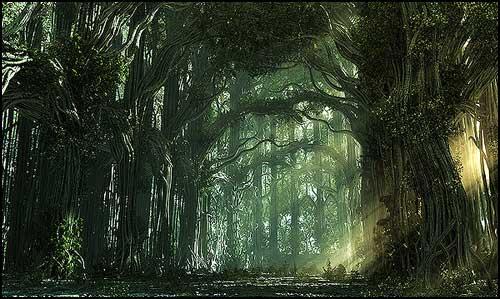 bosco-befana